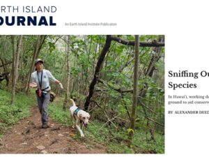 Earth Island Journal – Sniffing Out Invasive Species