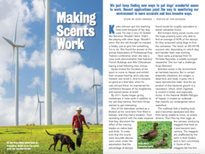 Island Dog Magazine – Making Scents Work