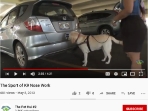 Pet Hui – K9 Scent Detection